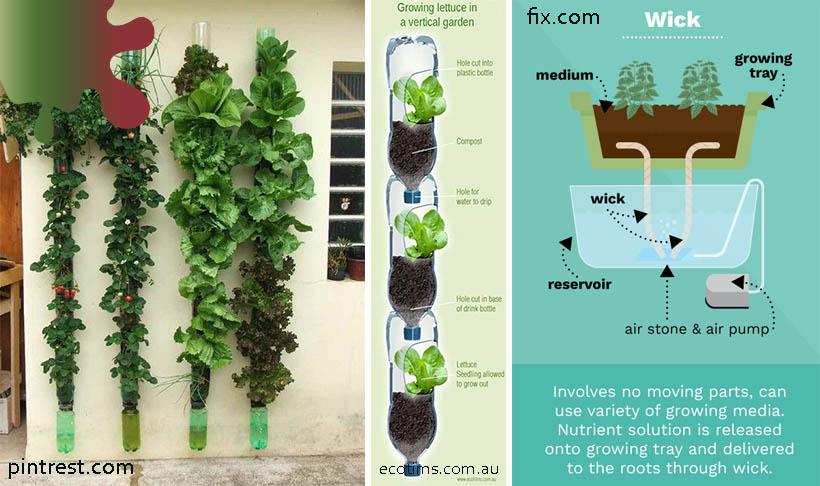 perete hidroponic principiu_gradina_verde pe verticala
